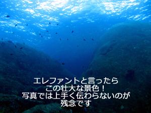 f0144385_23134290.jpg