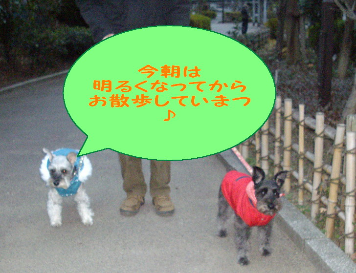c0138198_22121368.jpg