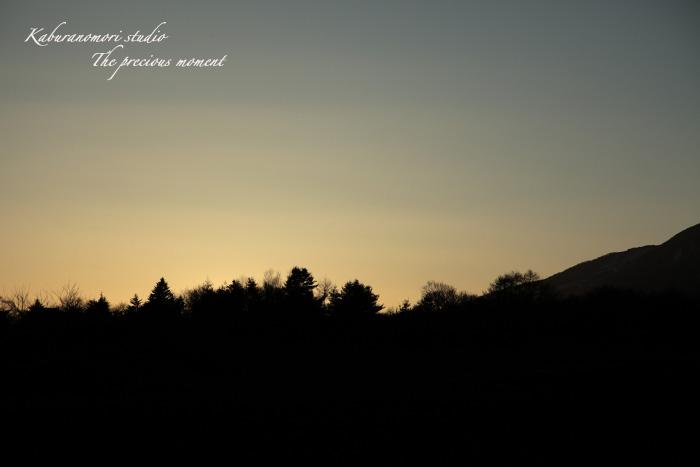 09/12/22   北八ヶ岳白樺の森_c0137403_1838466.jpg