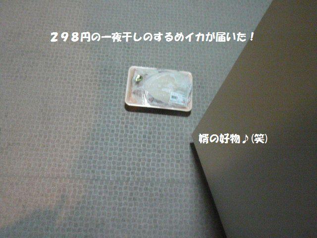 e0094407_1334323.jpg