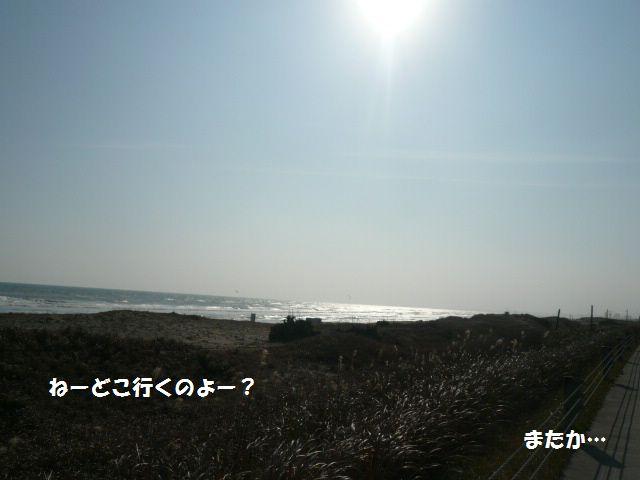 e0094407_2052146.jpg