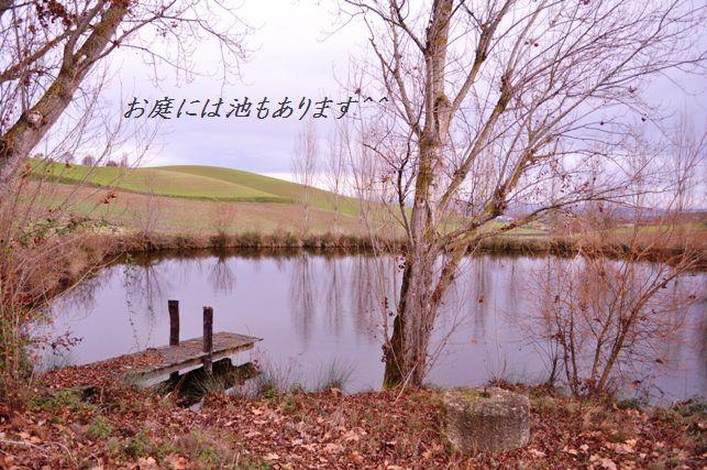 南仏でハッピークリスマス☆_d0104926_7133755.jpg