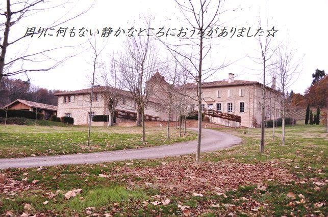 南仏でハッピークリスマス☆_d0104926_7141773.jpg