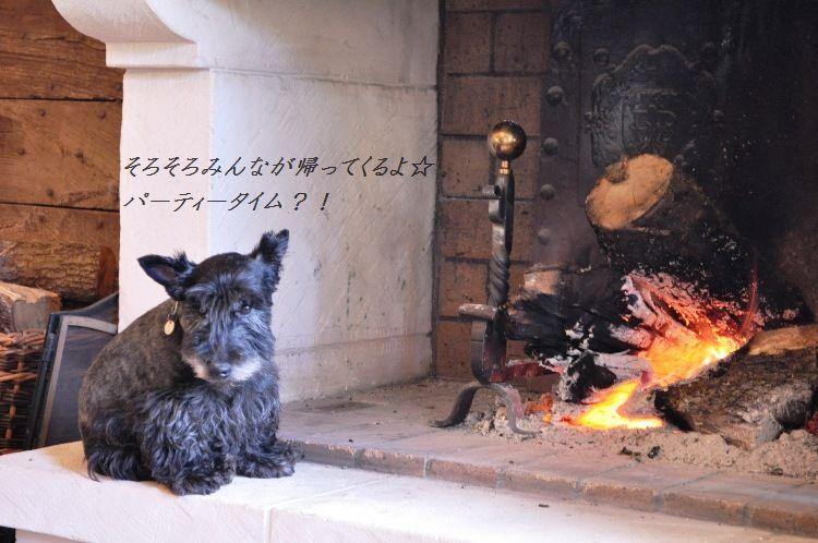 南仏でハッピークリスマス☆_d0104926_7341519.jpg