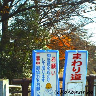 川沿いのおさんぽ_c0024345_10221885.jpg