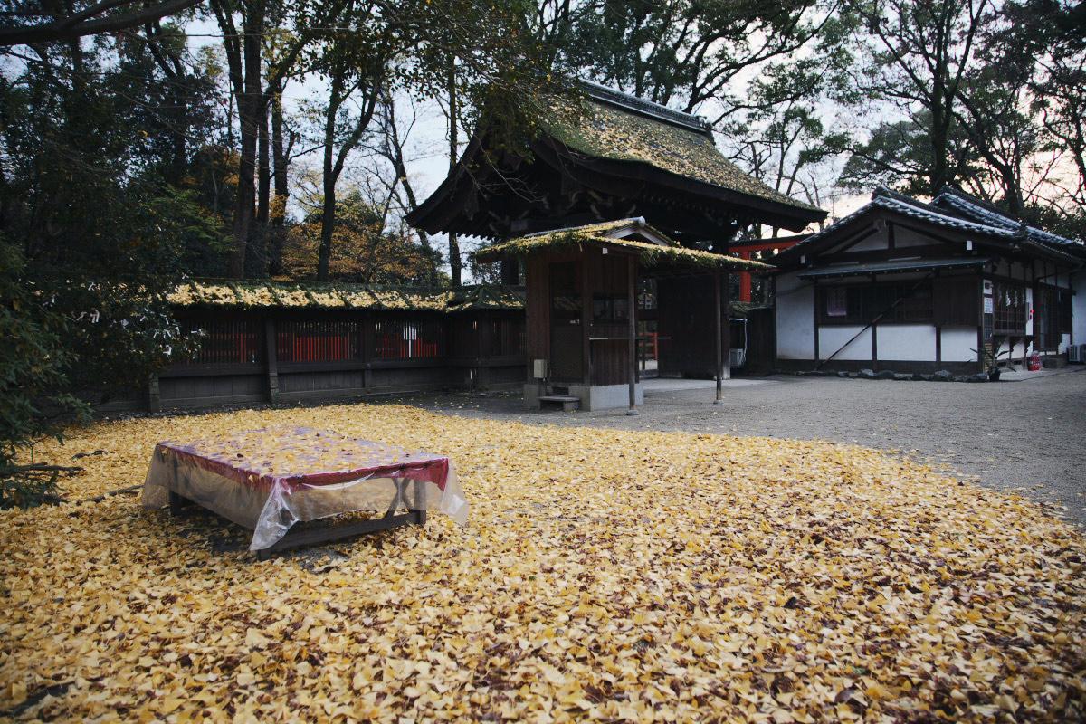 京都 糺の森 河合神社  1_f0021869_7191612.jpg