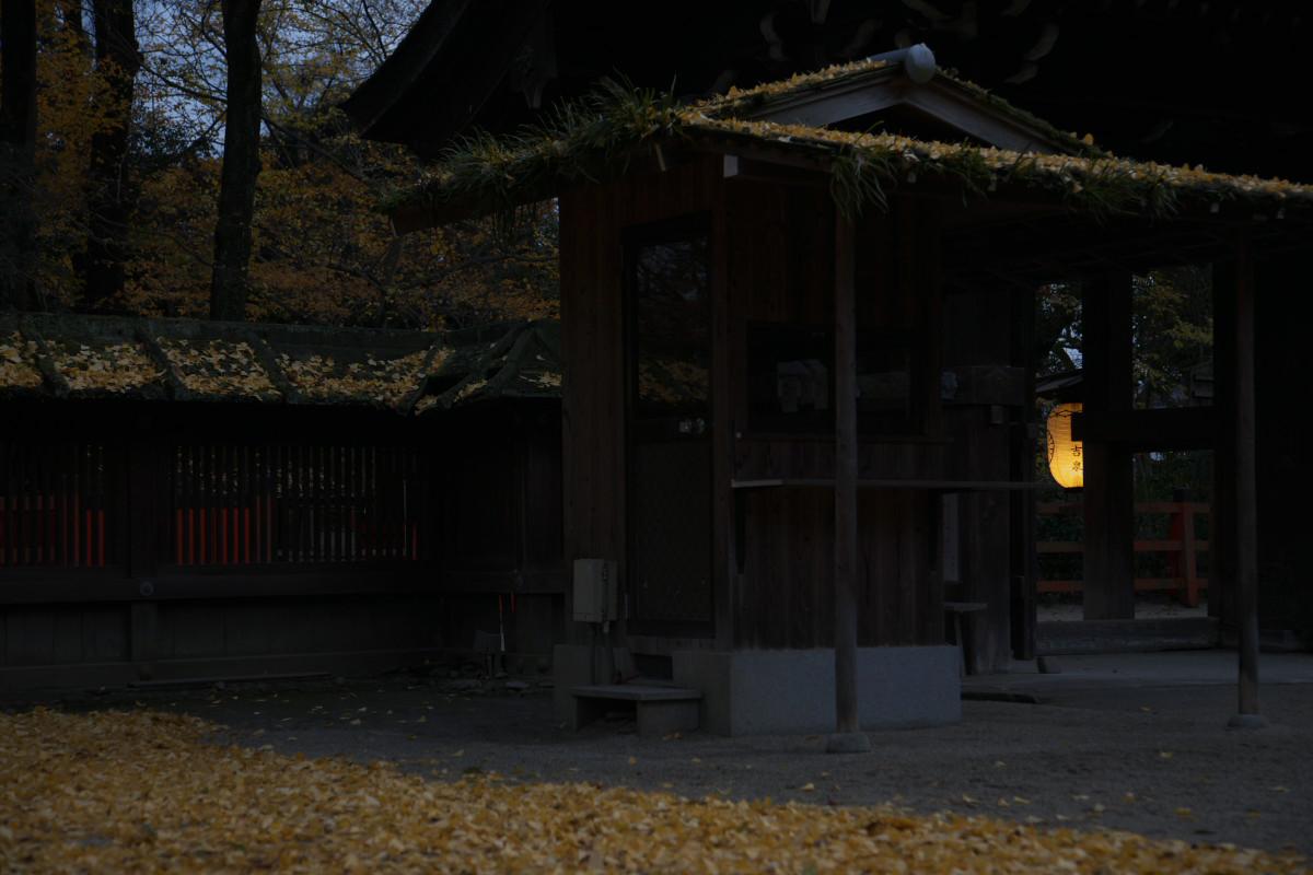 京都 糺の森 河合神社  1_f0021869_720286.jpg