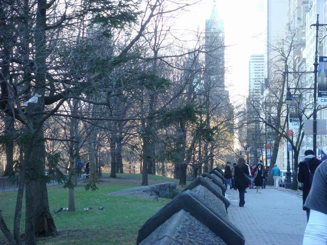 春のような暖かさのクリスマスの翌日、_d0100880_972815.jpg