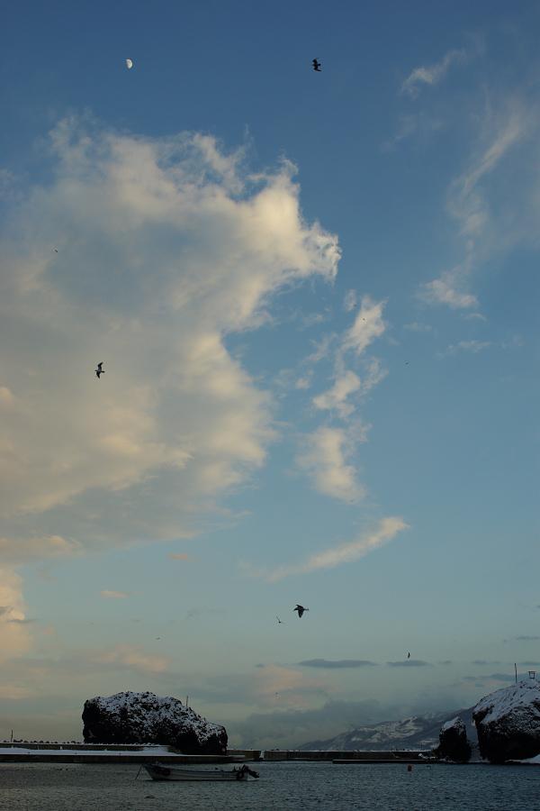 空に舞う 月へ舞う_e0051186_1824687.jpg