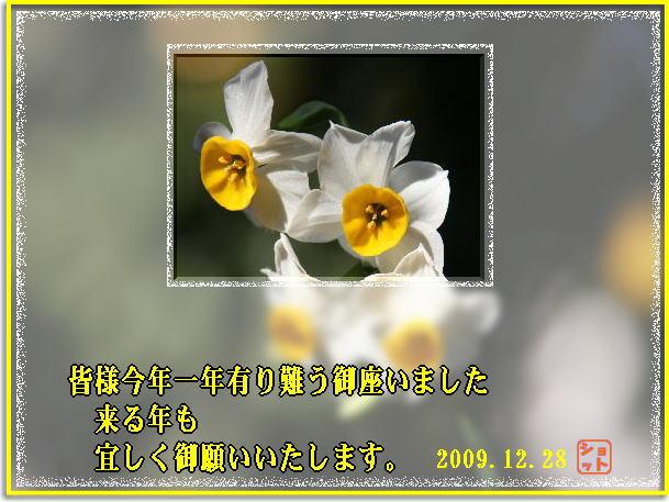 f0164592_10191641.jpg