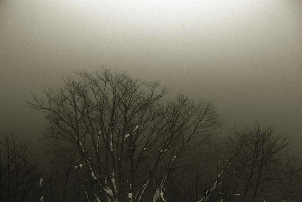 檜原湖にて_d0127209_1457537.jpg