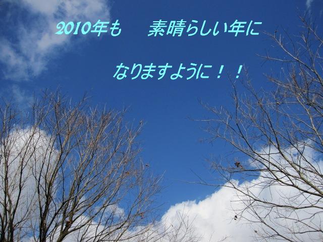 d0081210_992981.jpg