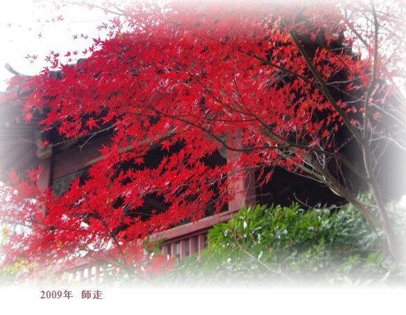 上野にはまだ・・・・_d0147812_199326.jpg