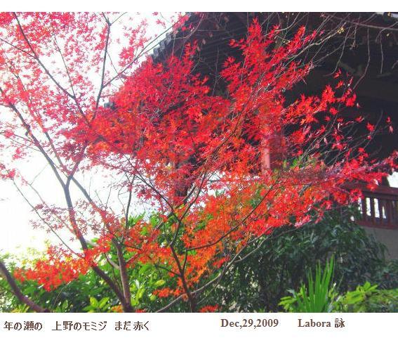 上野にはまだ・・・・_d0147812_1994397.jpg