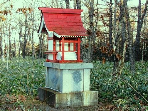 2009年12月29日(火):また除雪_e0062415_176141.jpg