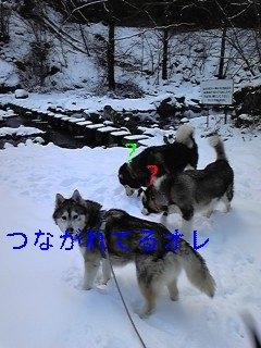 f0148927_1827424.jpg