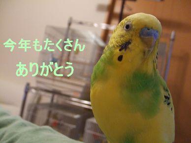 b0082757_1043851.jpg