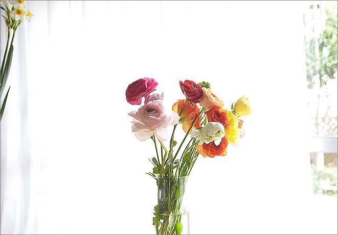 f0198771_0534032.jpg