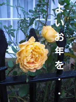 b0129725_1921440.jpg