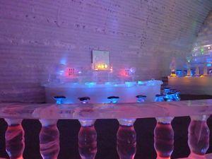 氷の博物館 _b0135948_8451013.jpg