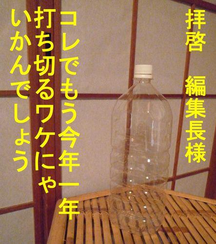 c0175759_2158138.jpg