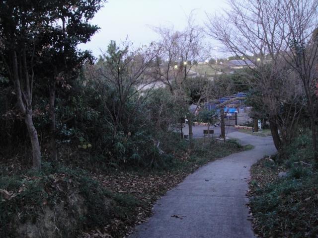 暮れなずむうみべの森&せんなん里海公園  by  (TATE-misaki)_c0108460_1753359.jpg