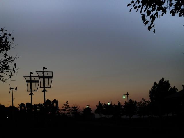 暮れなずむうみべの森&せんなん里海公園  by  (TATE-misaki)_c0108460_1754317.jpg