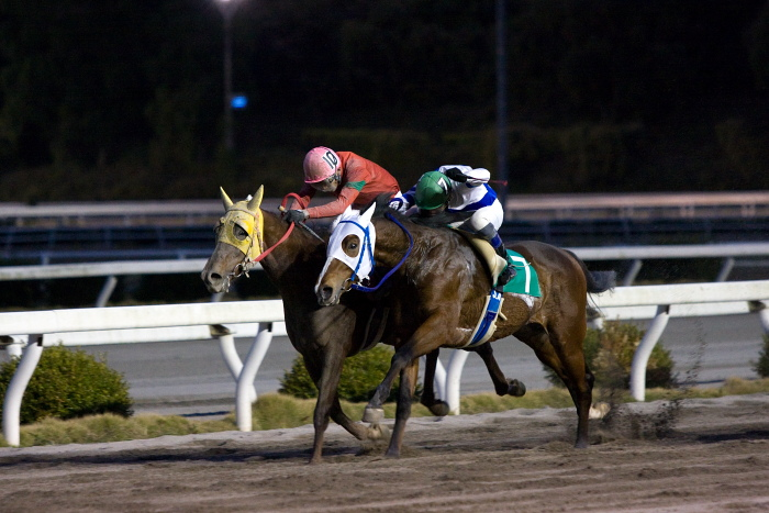 2009年12月7日(月) 高知競馬 8R C4_a0077663_18354547.jpg