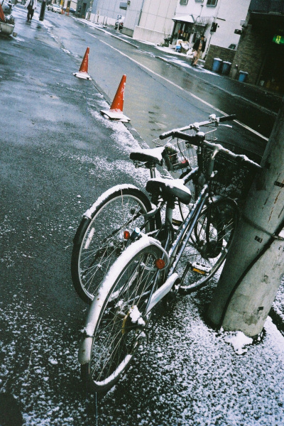 2009年12月の一日一枚_e0051186_16311250.jpg