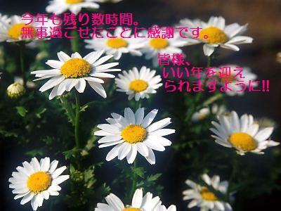 d0018704_13375393.jpg