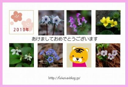 c0027027_23104040.jpg