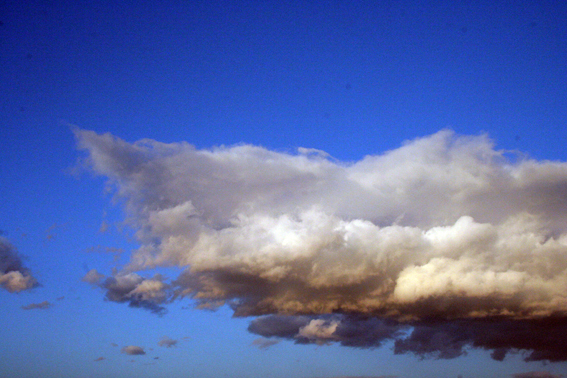 号外 新春 巨雲コレクション_f0203027_23581353.jpg