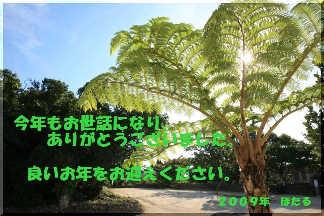 f0017530_19463686.jpg