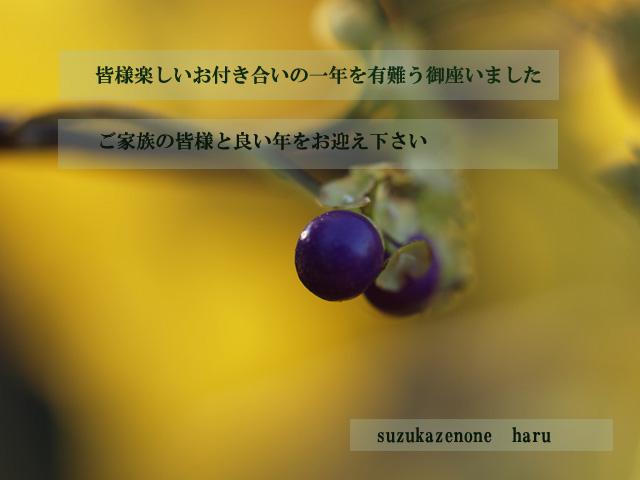 f0103534_23465559.jpg