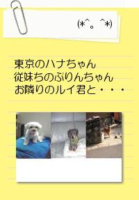 b0184636_9383113.jpg
