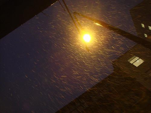 Slipping Snowy Christmas_f0164058_9545338.jpg