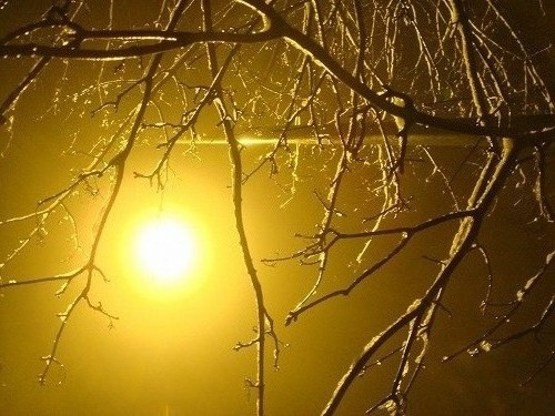 Slipping Snowy Christmas_f0164058_9565398.jpg