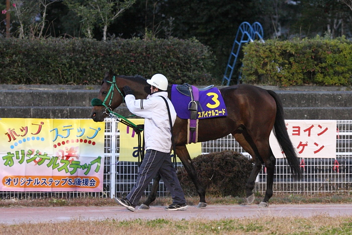 GRANDPRIX 第40回 高知県知事賞 その1_a0077663_21135071.jpg