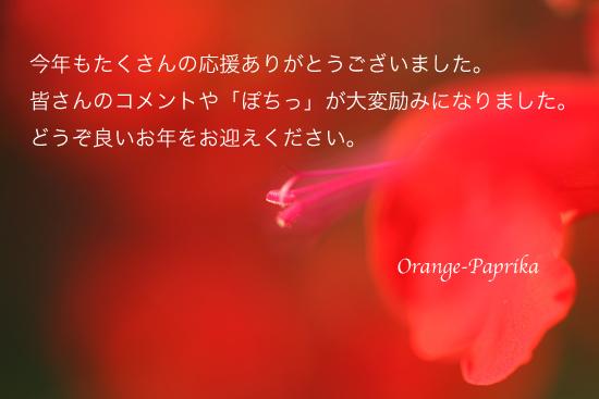 c0173670_11445876.jpg