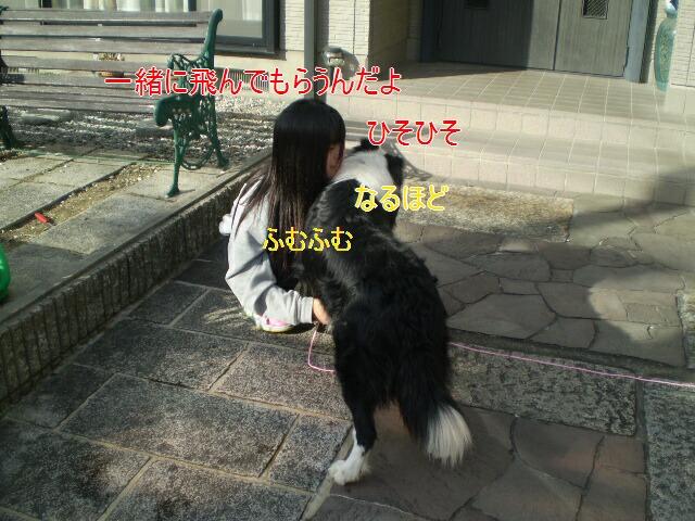 e0117976_14341033.jpg