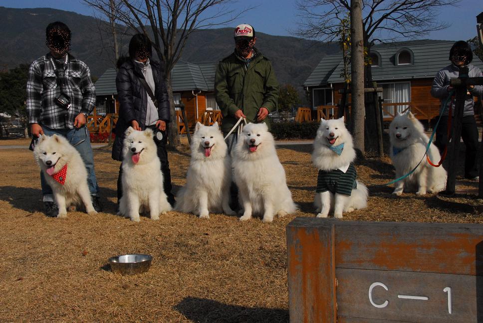 年末キャンプ♪ in四国三郎の郷  part3_a0049296_14201062.jpg