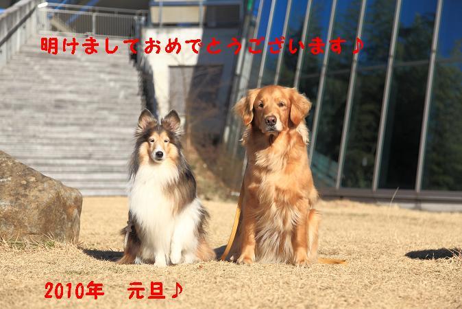 c0159512_214913.jpg