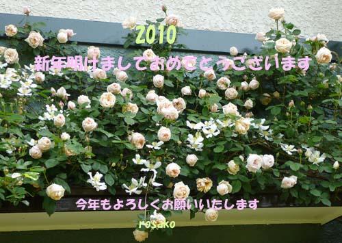 f0059818_15495071.jpg