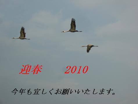 c0138720_1050214.jpg
