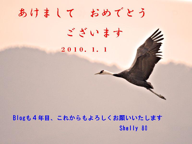 d0099420_0192185.jpg