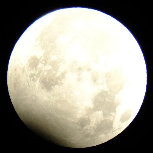 2010年1月1日の月食_e0089232_1573768.jpg