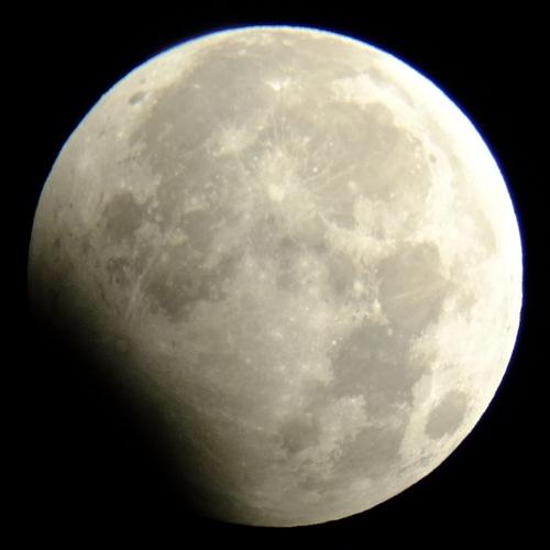 2010年1月1日の月食_e0089232_5425766.jpg