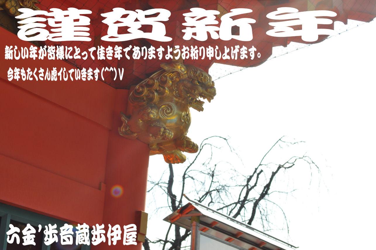 ☆2010年 元旦 日本晴れ(^^)V がんばれ(^^)Vがんばる(^^)V☆_e0083143_1175084.jpg