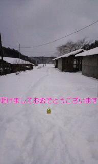 d0009952_18491340.jpg