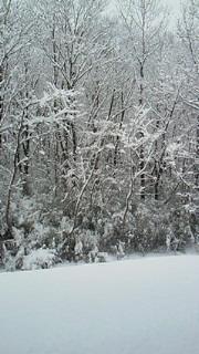 WHITE HAPPY NEW YEAR_b0105458_9392920.jpg